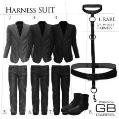 Gabriel_Harness_Suit